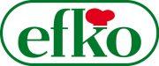 Logo_efko_2012_Pant356_4c_gr2